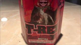 T-Rex By Sky Bacon Fireworks