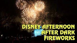 Disney Afternoon After Dark Fireworks - 90s Nite at Disneyland