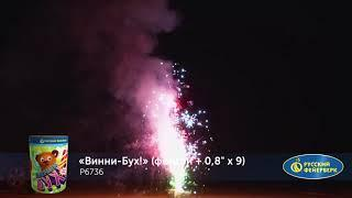 Фонтан - салют P6736 Винни-Бух