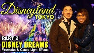Disneyland Tokyo Part 2 | Disney Dream Fireworks and Castle Lights Effects
