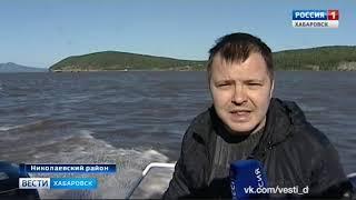 Вести-Хабаровск. Прокурорская проверка заездков