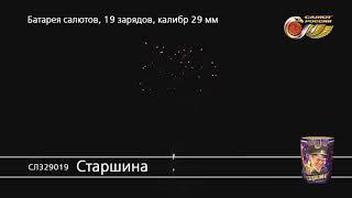 СЛ329019 Старшина Батарея салютов