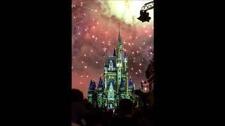 Disney Castle Fireworks #shorts