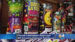Florida Lawmakers Approved Fireworks Revamp