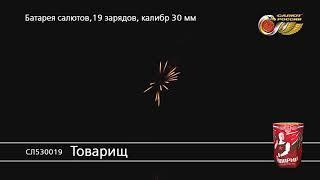 СЛ530019 Товарищ Батарея салютов