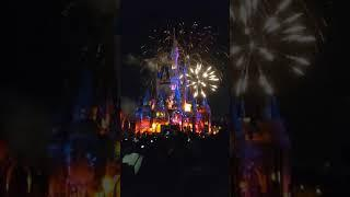 Disney Fireworks and proposal