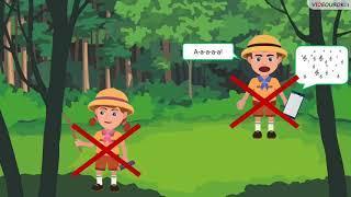 Естествознание 2 класс 8 урок