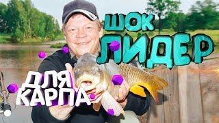 Шок лидер для ловли карпа Что это Где и Как его применять Летняя рыбалка