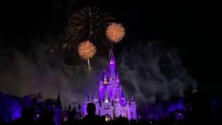 Disney Vacation Club Moonlight Magic Fireworks at WDW Magic Kingdom, Feb. 5. 2019