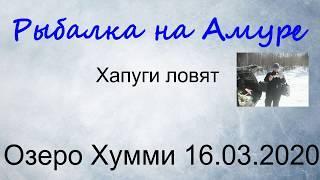 Рыбалка на Амуре.16.03.2020 Хапуги ловят.