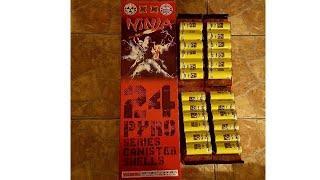 Six 2019 24 pyro series 60g canister shells ninja fireworks demo