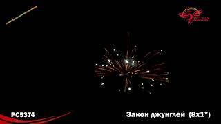 "Римская свеча РС5374 Закон джунглей (1,0""х8)"