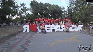 Акция в поддержку партии Анатолия Шария Бердянск