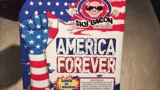 America Forever By Sky Bacon Fireworks