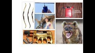 нужные вещи своими руками! ( электрошокер, отпугиватель собак, лук для стрельбы, салюты и петарды).