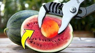 Viral Experiment | Glowing 1000 Degree METAL BALL vs WATERMELON |
