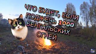 ЧТО БУДЕТ, ЕСЛИ ПОДЖЕЧЬ 1000 БЕНГАЛЬСКИХ ОГНЕЙ!