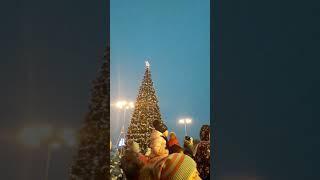 Огромные бенгальские огни