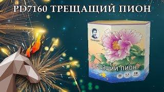 "PD7160 Трещащий пион (1.1"" х 19) пиротехника оптом ""ОГОНЁК"""
