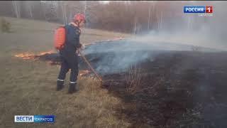 Спасатели несколько раз выезжали на тушение сухой травы