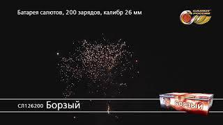 Борзый СЛ126200 фейерверк Салюты России NEW