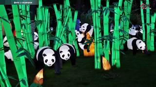 В Харькове пройдет фестиваль китайских фонариков - 02.10.2019