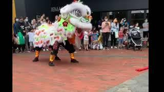 TRADITIONAL DRAGON DANCE//CHINESE LUNAR YEAR CELEBRATION WITHOUT FIREWORKS// FEB.6,2021