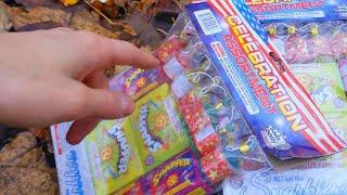 This FIREWORKS Assortment Was ONLY $3!