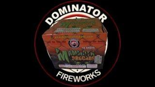 10 SHOT MAMMOTH BROCADE - DOMINATOR FIREWORKS