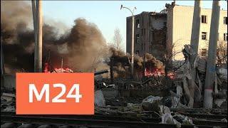 Завод пиротехники в Гатчине работал без лицензии - Москва 24