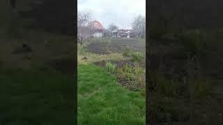 Взрыв петарды p2000