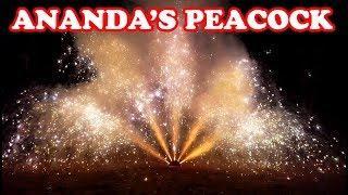Peacock Asrafi from Ananda Fireworks