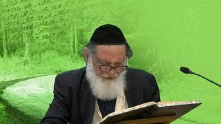 הרב שלום גוטליב Бааль Сулам - Предисловие к книге Зоар- 22 - рав Шалом Готлиб