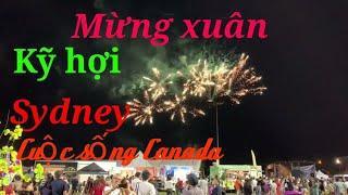 Người việt ở úc! bắn pháo hoa mừng xuân kỷ hợi ! Fireworks!Happy Lunar new year!Thanh  Nguyen!