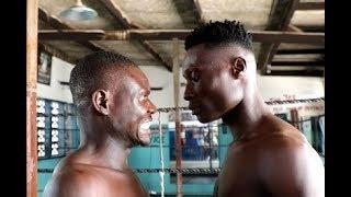 Boxers promise fireworks at maiden Graphic Sports' Boxing Festival