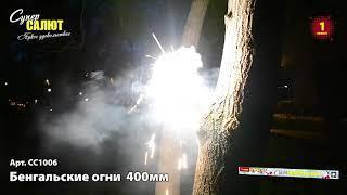 СС1006  Бенгальские огни  (3 шт) 400мм