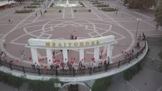 Встреча партии Шария. Мелитополь 05.07.19