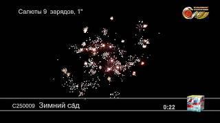 """Зимний сад С250009 салют от ТМ """"Салюты России"""""""