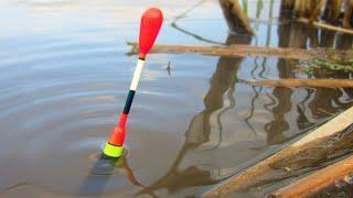Рыбалка с Сергеем ЗУ. Карась. Леска 3D Хамелеон