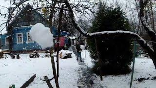 ФЕЙЕРВЕРКИ СНЕЖИНКА, ЗОЛОТОЙ ДРАКОН Какой лучше + первый снег
