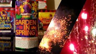 Phantom Fireworks Garden in Spring Repeater