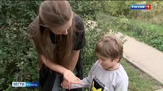 Ядовитые «хлопушки»: опасные ягоды на кустарниках в рязанских дворах