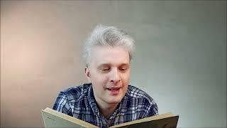 Николай Носов Бенгальские огни. Читает Владлен Воеводин