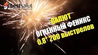 """Салют """"Огненный феникс"""" FP-B120 0.8"""" 200 выстрелов"""