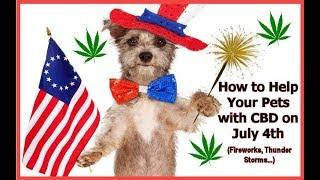 How CBD Can Help Your Pets During Thunder and Fireworks