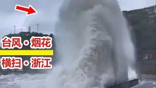 颱風現場情況