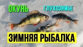 Как я ловил окуня на мормышку в глухозимье Зимняя рыбалка