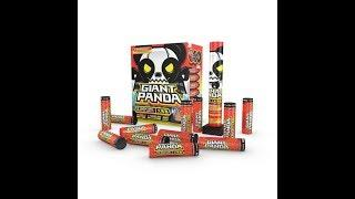 Six Giant Panda 6 inch 60g canister shell red apple fireworks demo