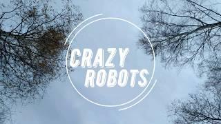 Петарды Crazy Robots мега взрыв