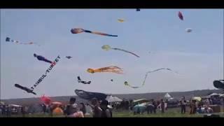 в Николаеве прошел третий международный фестиваль воздушных змеев